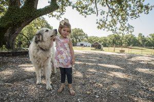 little girl with dog on a farm